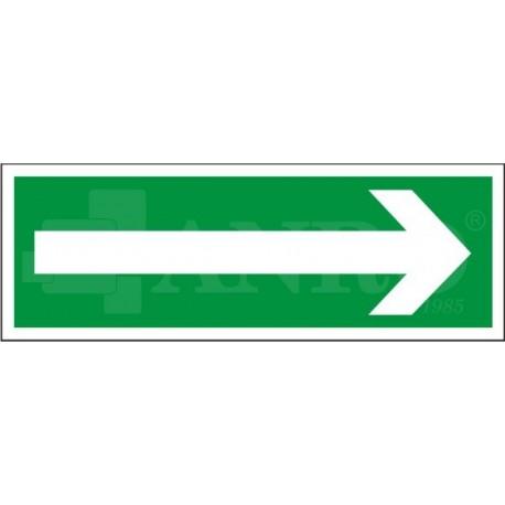 Kierunek drogi ewakuacyjnej 100x300